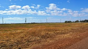 Factory, Warehouse & Industrial commercial property for sale at 21 Ivy Street Blackall QLD 4472