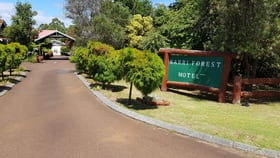 Hotel, Motel, Pub & Leisure commercial property for sale at 20 Widdeson Street Pemberton WA 6260