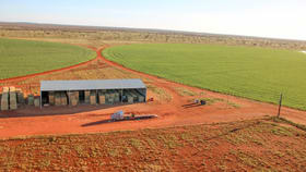 Rural / Farming commercial property for sale at 800 Coppock Road Anmatjere NT 0872