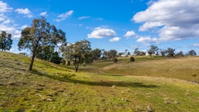Rural / Farming commercial property sold at 2/2678 Windellama Road Goulburn NSW 2580
