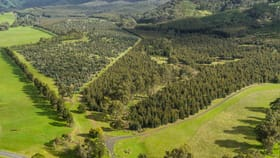Rural / Farming commercial property for sale at 910 King Parrot Creek Road Strath Creek VIC 3658