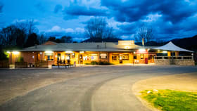Hotel, Motel, Pub & Leisure commercial property for sale at 232-236 Kiewa Valley Highway Tawonga South VIC 3698