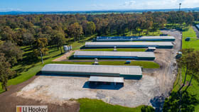 Rural / Farming commercial property for sale at 667 Seaham Road Nelsons Plains NSW 2324