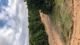 Rural / Farming commercial property for sale at 45 Regent Drive Colignan VIC 3494
