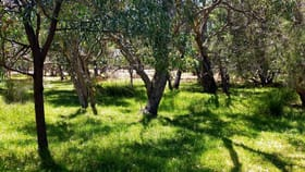 Rural / Farming commercial property for sale at 7 Edwards Place Muchea WA 6501