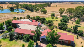 Offices commercial property for sale at 69 Killeens Rd Rutherglen VIC 3685