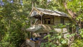 Hotel, Motel, Pub & Leisure commercial property for sale at Esplanade Cape Tribulation QLD 4873