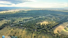 Development / Land commercial property for sale at 66A & 71/694D Hermitage Road Pokolbin NSW 2320