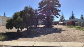 Development / Land commercial property for sale at 7 East Terrace Ceduna SA 5690