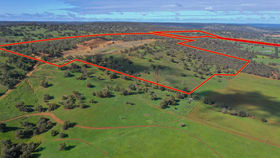 Development / Land commercial property for sale at Lot 202/2138 Great Northern Highway Bullsbrook WA 6084