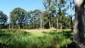 Development / Land commercial property for sale at Lot 152 Hamilton Drive Boambee NSW 2450