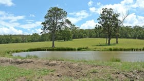 Rural / Farming commercial property sold at 21 Halloran Rd North Arm Cove NSW 2324