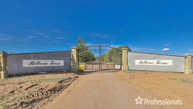 Rural / Farming commercial property for sale at Lot 1 Pooncarie  Road Wentworth NSW 2648