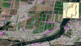 Rural / Farming commercial property for sale at 38 Queen Street Bundaberg North QLD 4670