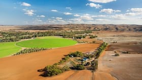 Rural / Farming commercial property for sale at 331 Sunnyview Road Cambrai SA 5353