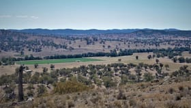 Rural / Farming commercial property for sale at 621 Narroogal  Road Wellington NSW 2820