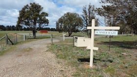 Rural / Farming commercial property for sale at 615 Currawang  Road Tirrannaville NSW 2580