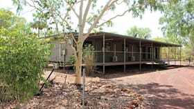Rural / Farming commercial property for sale at 228 Martins Rd Mataranka NT 0852