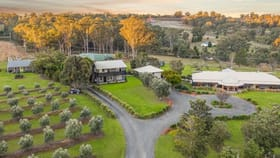 Rural / Farming commercial property for sale at 84 Wilderness Road Lovedale NSW 2325