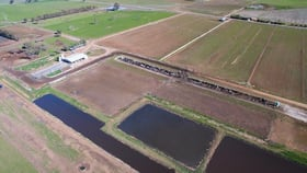 Rural / Farming commercial property for sale at 146 Yabba South Road Invergordon VIC 3636