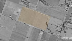 Rural / Farming commercial property for sale at Lot 302 Siegersdorf Road Angaston SA 5353