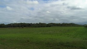 Rural / Farming commercial property for sale at Lt 7-9 1 and 2 Orient Rd Ingham QLD 4850
