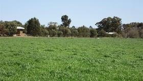 Rural / Farming commercial property for sale at 5700 Benalla-Tocumwal Road Muckatah VIC 3644