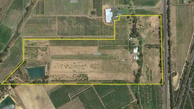 Rural / Farming commercial property for sale at 19724 South Western Highway Newlands WA 6251