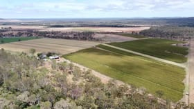 Rural / Farming commercial property for sale at 453 Herbert River Road Innot Hot Springs QLD 4872