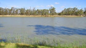 Rural / Farming commercial property for sale at 77 Prominitz Road Waikerie SA 5330