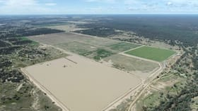 Rural / Farming commercial property for sale at Tharlane Wee Waa NSW 2388