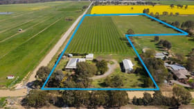 Rural / Farming commercial property for sale at 780 Archer Road Kialla VIC 3631