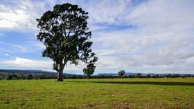Rural / Farming commercial property for sale at 1 & 2/ Long Lane Barwite VIC 3722