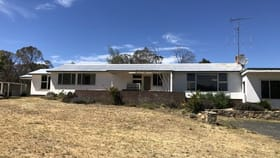 Rural / Farming commercial property for sale at 736 Kybeyan Road Nimmitabel NSW 2631