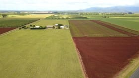 Rural / Farming commercial property for sale at 50 Graham Road Tolga QLD 4882