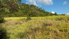 Rural / Farming commercial property for sale at Lot 56 Yakapari-Seaforth Road Mount Jukes QLD 4740