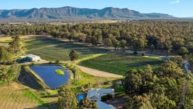 Rural / Farming commercial property for sale at 771 Hermitage Road Pokolbin NSW 2320