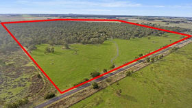 Rural / Farming commercial property for sale at 1631 Mt Napier Road Buckley Swamp VIC 3301