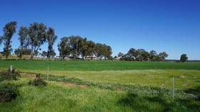 Rural / Farming commercial property for sale at 472 NIBY NIBY ROAD, BERKSHIRE VALLEY Moora WA 6510