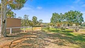 Rural / Farming commercial property for sale at 108 Martins Lane Tamworth NSW 2340