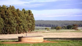 Rural / Farming commercial property for sale at 200 Dairy Hills Road Byaduk VIC 3301
