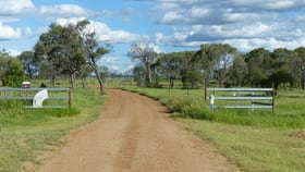 Rural / Farming commercial property for sale at 5 Kennedy Development Road Hughenden QLD 4821