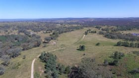 Rural / Farming commercial property for sale at 1033 Haywood Road Delungra NSW 2403