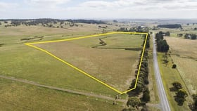 Rural / Farming commercial property for sale at Lot 1 Linton-Carngham Road Carngham VIC 3351