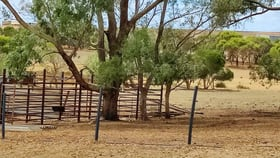 Rural / Farming commercial property for sale at 140 Napier Road Dalyup WA 6450