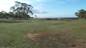 Rural / Farming commercial property for sale at 11 Golf Park Drive Charlton VIC 3525