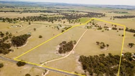 Rural / Farming commercial property for sale at 219 Mersing Road Glanmire NSW 2795