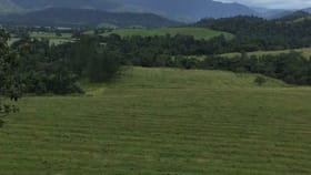 Rural / Farming commercial property for sale at 0 0 Japoonvale QLD 4856