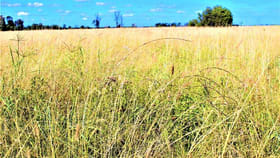 Rural / Farming commercial property for sale at 0 Rannoch Chinchilla QLD 4413