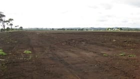 Rural / Farming commercial property for sale at 23430 Bass Highway Broadmeadows TAS 7330